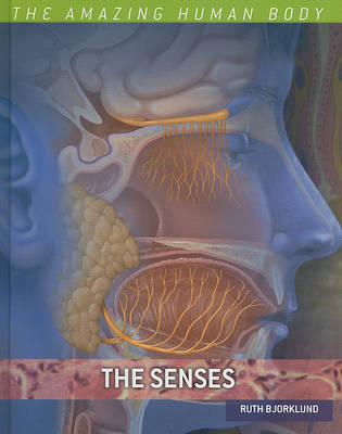 The Senses by Ruth Bjorklund