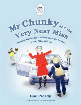 Mr Chunky and the Very Near Miss by Sue Pready image