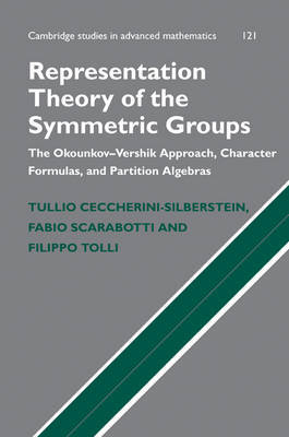 Representation Theory of the Symmetric Groups by Tullio Ceccherini-Silberstein image
