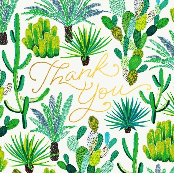 Oh Deer: Cacti Thank You Greeting Card