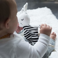Wee Gallery: Organic Cuddle Bunnies - Stripes image