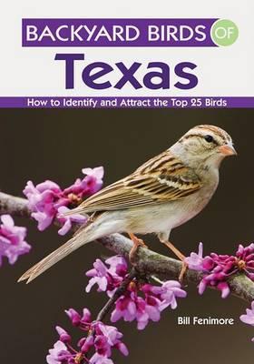 Backyard Birds of Texas by Bill Fenimore