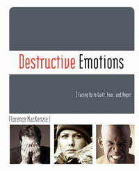 Destructive Emotions by Florence MacKenzie