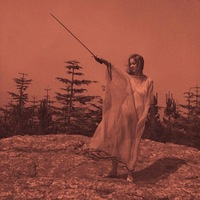 II (LP) by Unknown Mortal Orchestra