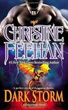 Dark Storm (Carpathian Series #23) US Ed. by Christine Feehan