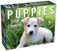 Puppies 2019 Mini Day-to-Day Calendar by Andrews McMeel Publishing