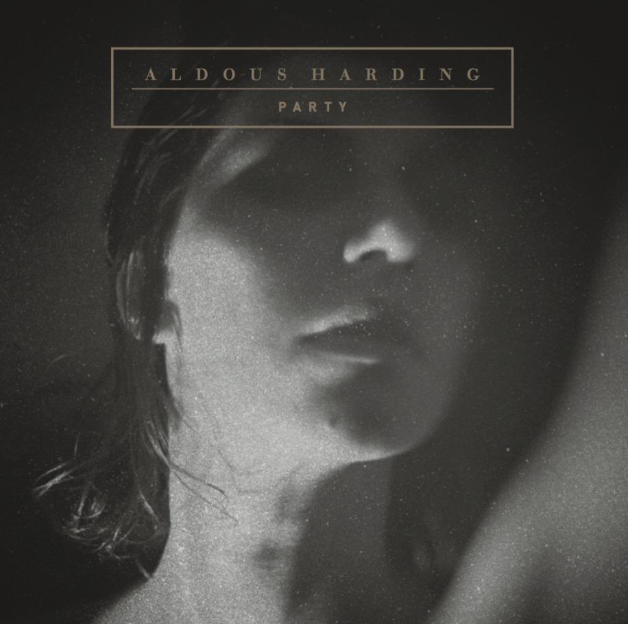 Party (LP) by Aldous Harding image