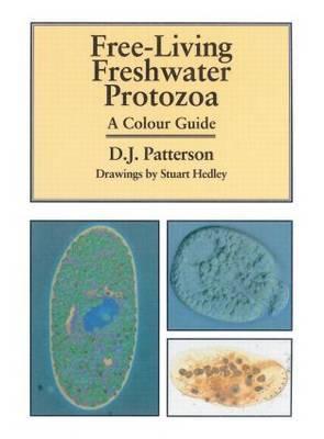 Free-living Freshwater Protozoa by David J. Patterson image