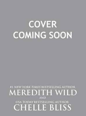 Misadventures of a City Girl by Meredith Wild image