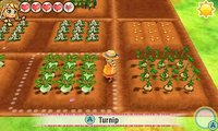 Story of Seasons: Trio of Towns for Nintendo 3DS image