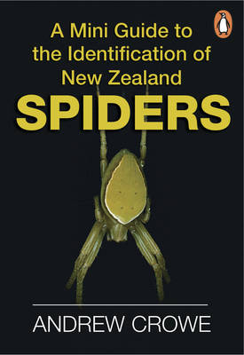 A Mini Guide to the Identification of New Zealand Spiders by Andrew Crowe image