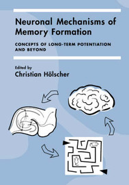 Neuronal Mechanisms of Memory Formation image