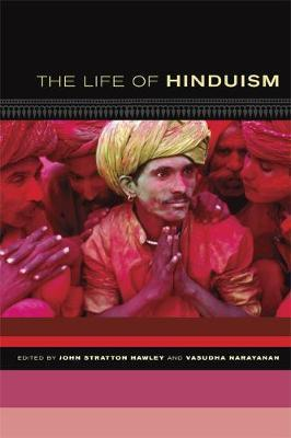 The Life of Hinduism image