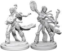 Pathfinder Deep Cuts: Unpainted Miniature Figures - Human Female Sorcerer