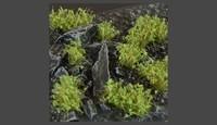 Gamer Grass Dark Green Shrubs (Wild)
