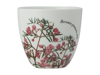 Maxwell & Williams: Royal Botanic Garden Tealight Holder - Boronia