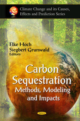 Carbon Sequestration image