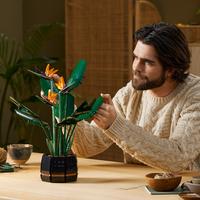 LEGO Creator: Botanical Series - Bird of Paradise (10289)