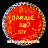 Damage And Joy (2LP) by The Jesus and Mary Chain