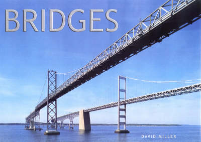 Bridges by David M Miller image