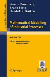 Mathematical Modelling of Industrial Processes by Stavros Busenberg
