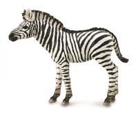 CollectA - Zebra Foal (M)