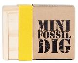 Seedling: Mini Fossil Dig