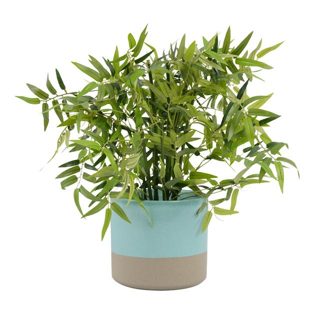 Sema Pot Oasis (20.5x18.5cm)