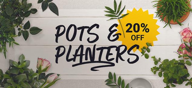 20% off Pots & Planters!