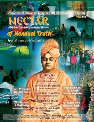 Nectar of Non-Dual Truth #33 by Babaji Bob Kindler image