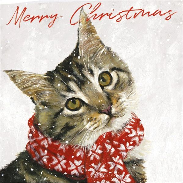 Art Marketing:Boxed Christmas Cards - Ollie image