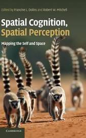 Spatial Cognition, Spatial Perception image
