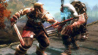 Viking: Battle For Asgard for PS3 image