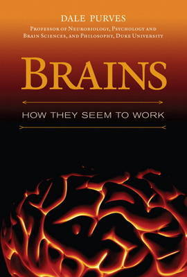 Brains by Dale Purves image