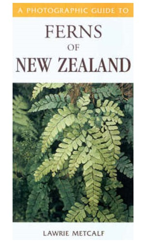 Photographic Guide to Ferns of New Zealand by Lawrie Metcalf image