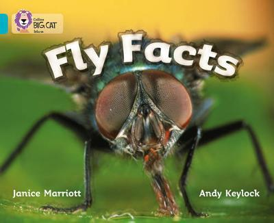 Fly Facts by Janice Marriott