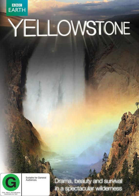Yellowstone DVD