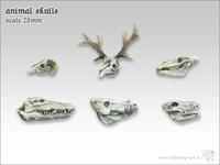 Tabletop-Art: Animal Skulls - Parts Set