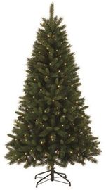 120 LED Light Appleton Christmas Tree with 518 Tips - Medium (6ft) image
