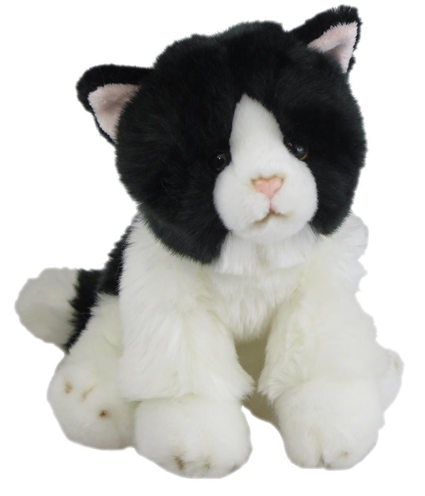 Antics: Black & White Cat - Sitting image