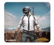 Steelseries Qck+ PUBG Miramar Edition for PC Games