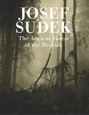 Josef Sudek - Mionsi Forest