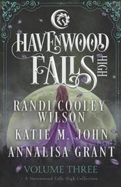 Havenwood Falls High Volume Three by Randi Cooley Wilson image