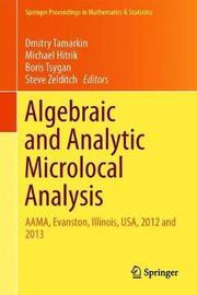 Algebraic and Analytic Microlocal Analysis
