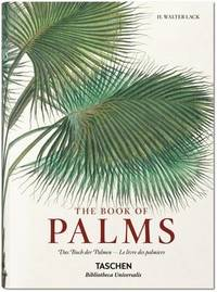 von Martius. The Book of Palms by H.Walter Lack