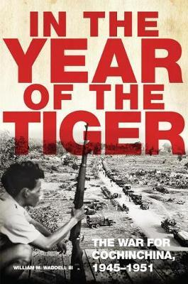 In the Year of the Tiger by William M Waddell image