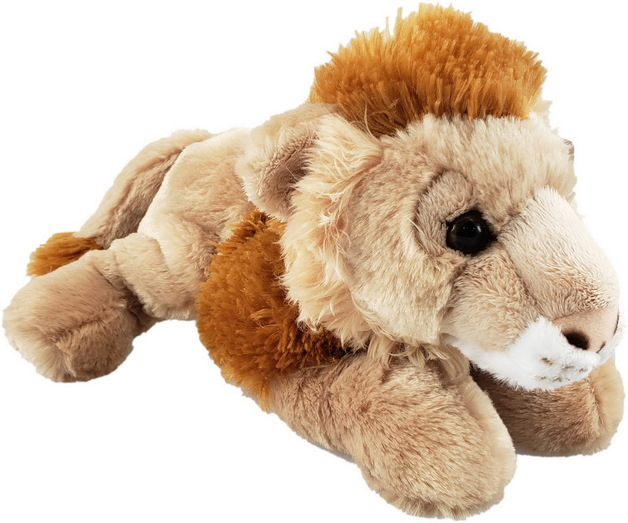 Antics: Lion