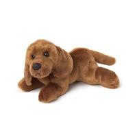 Dog: Dustin Dachshund 25Cm