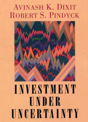 Investment under Uncertainty by Robert S. Pindyck