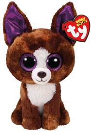 Ty Beanie Boo Dexter Chihuahua